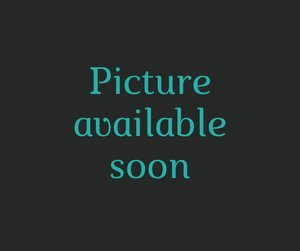 Stylos feutres (5x) Noir (Huile)