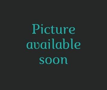 Vinyle Miroir - Argent 5m
